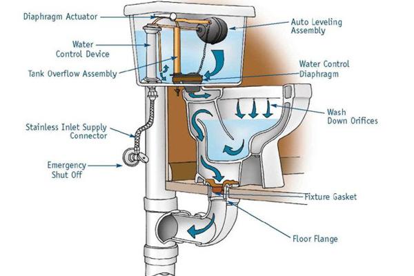 d5 - Débouchage WC
